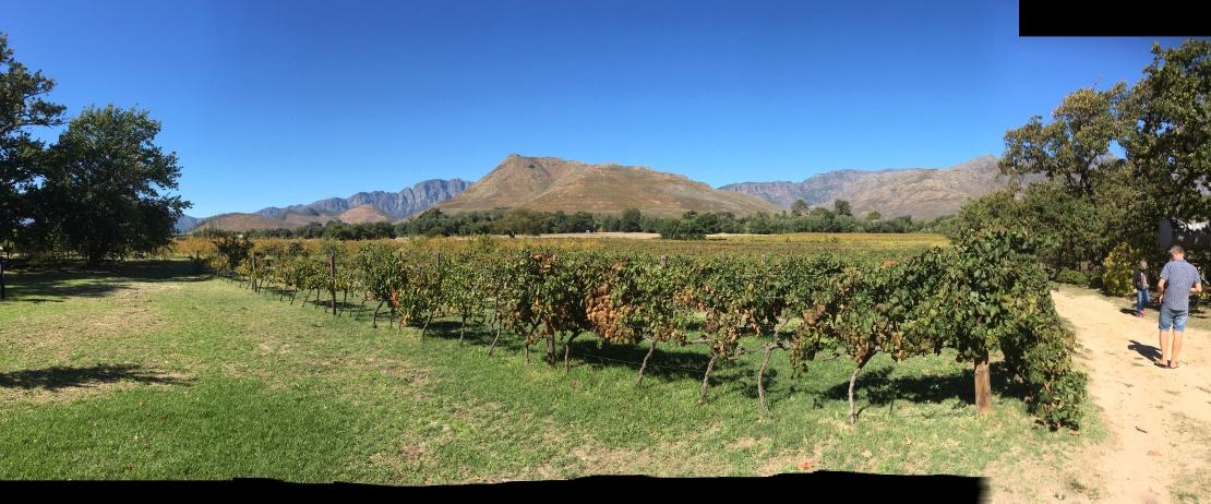 Wineries Franschhoek