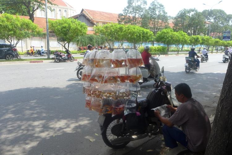 street sellers vietnam