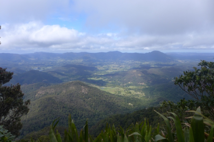 view from top of mount warning